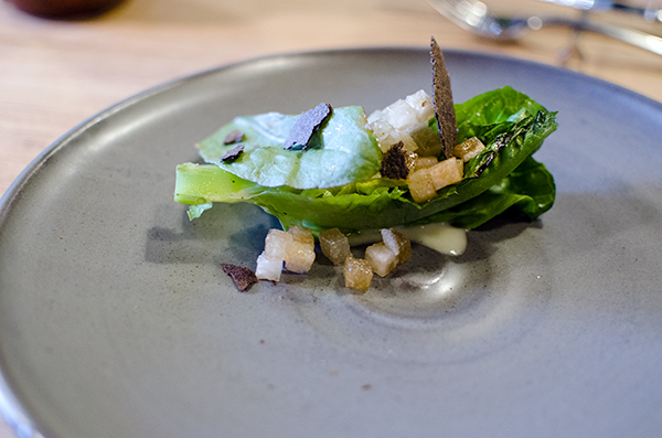 Farm Spirit: little gem lettuce. asian pear, charred onion crisp, green tomato, sorrel